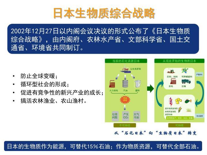 日本生物质综合战略
