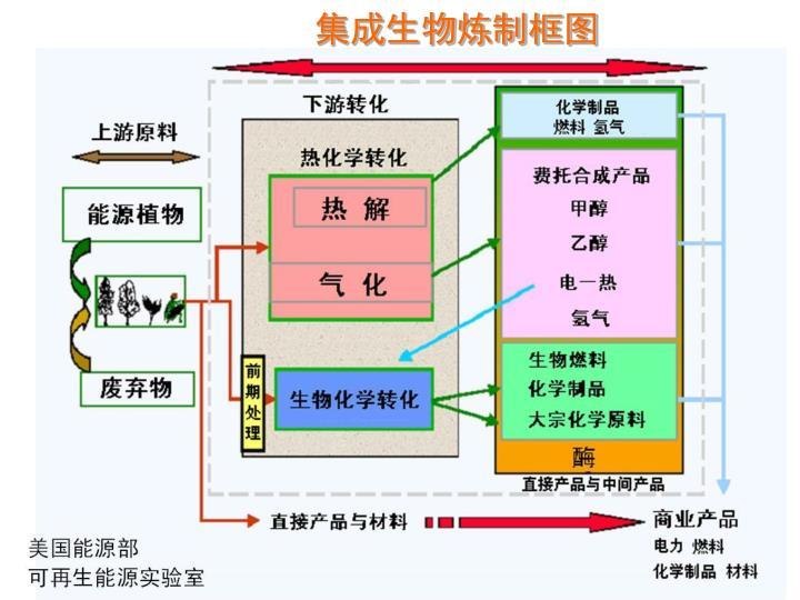 集成生物炼制框图