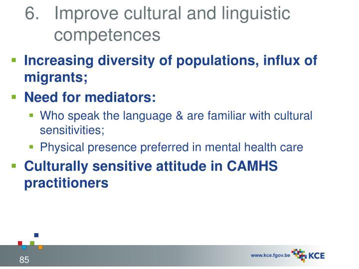 Improve cultural and linguistic competences
