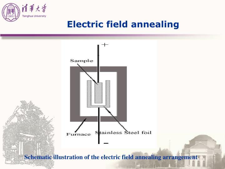 Electric field annealing