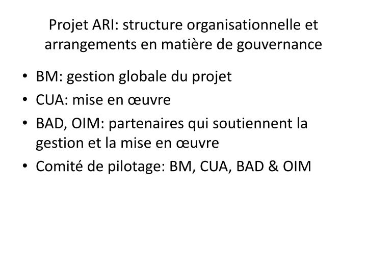Projet ARI: structure organisationnelle et arrangements en matière de gouvernance