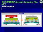 anisotropic conductive film acf3
