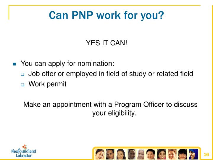 Can PNP work for you?