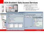 soa enabled data access services