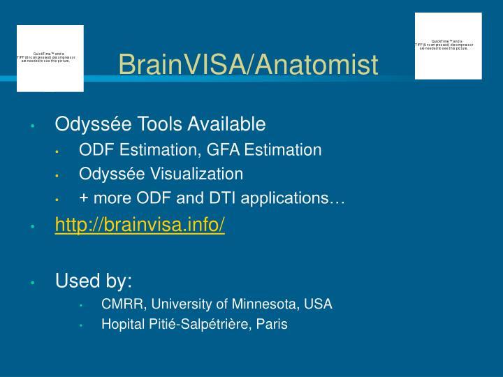 BrainVISA/Anatomist