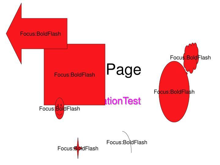 Focus:BoldFlash