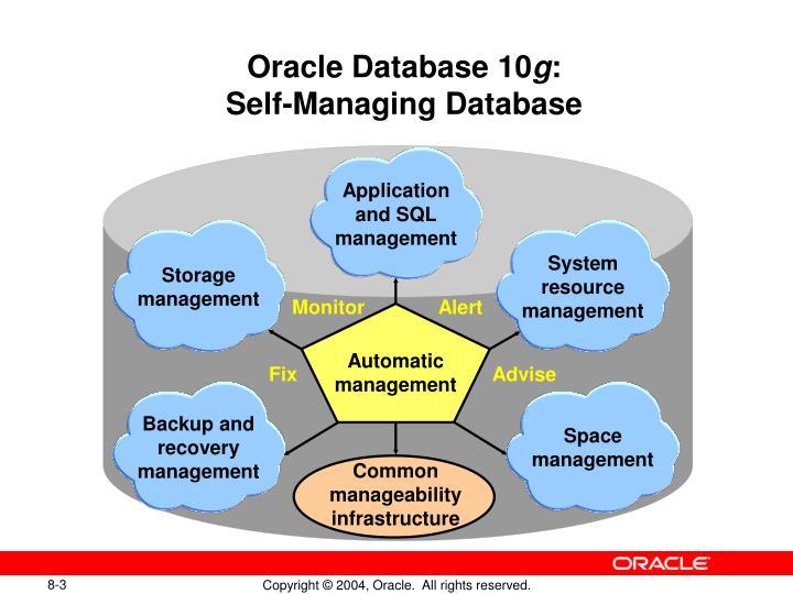 Oracle database 10 g self managing database