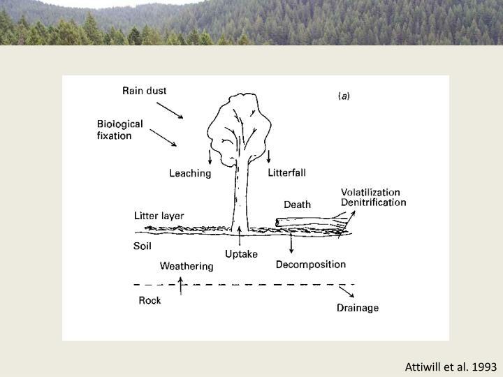 Attiwill et al. 1993