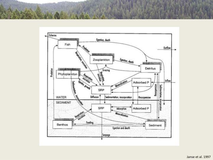 Janse et al. 1997
