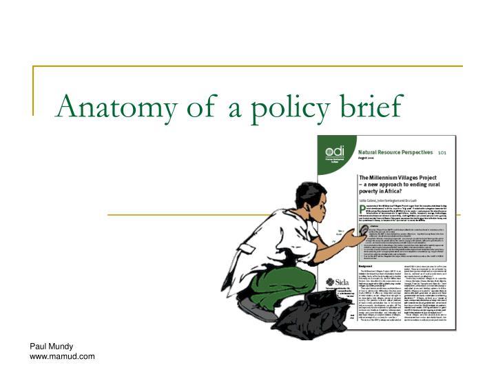 anatomy of a policy brief n.