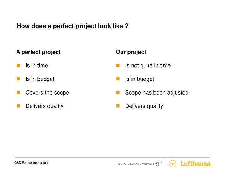 How does a perfect project look like