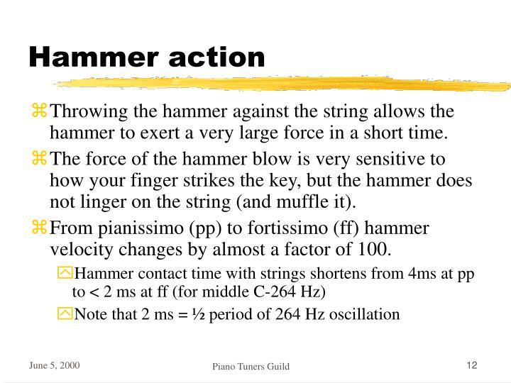 Hammer action