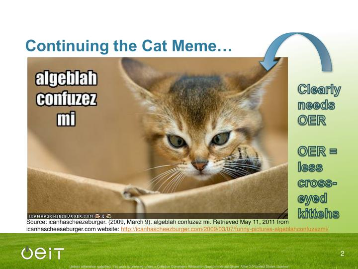 Continuing the Cat Meme…