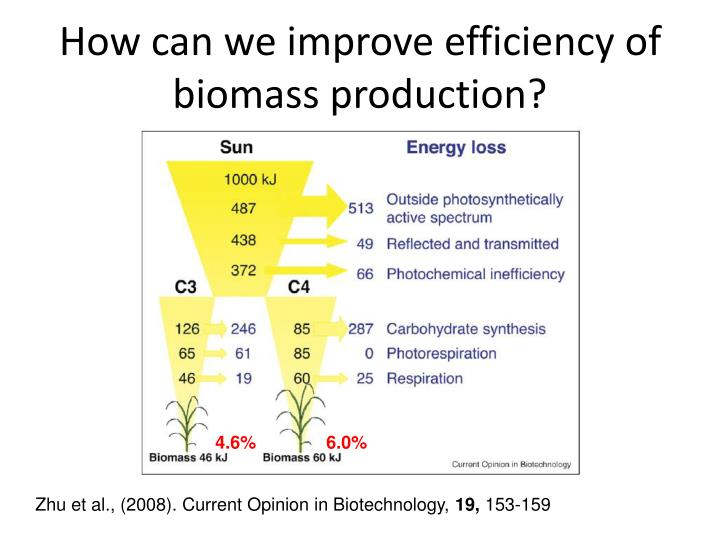 How can we improve efficiency of biomass production?