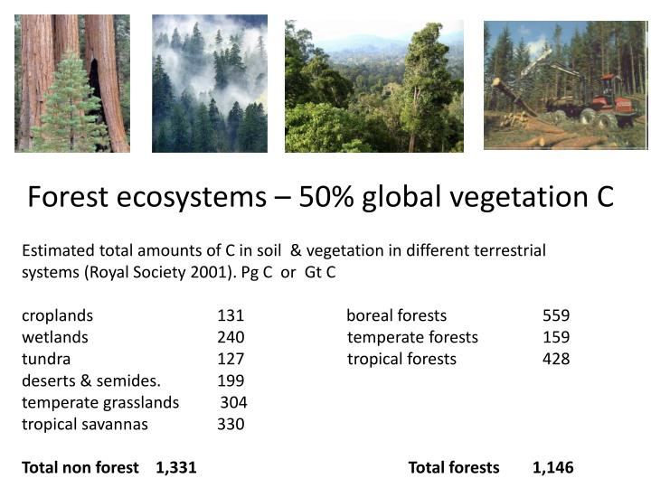 Estimated total amounts of C in soil  & vegetation in different terrestrial