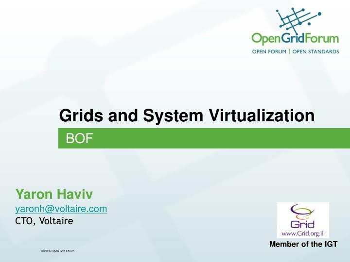 grids and system virtualization n.