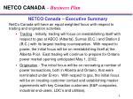 netco canada business plan4