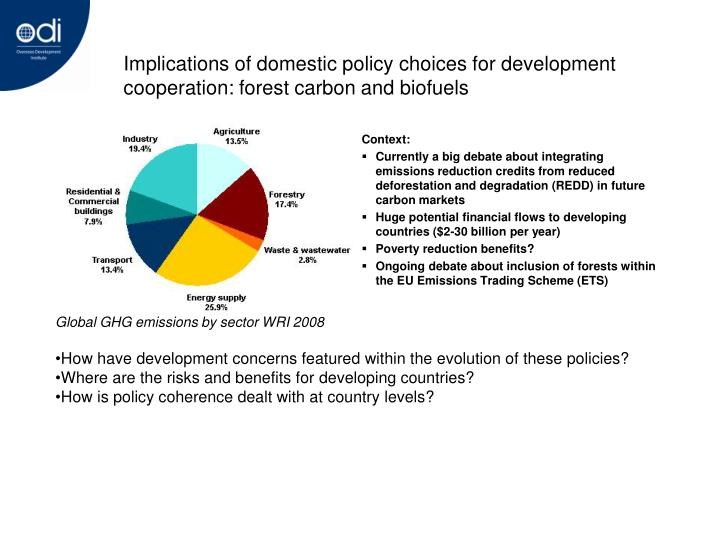Implications of domestic policy choices for development cooperation: forest carbon and biofuels