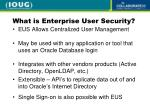 what is enterprise user security