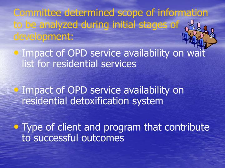Committee determined scope of information to be analyzed during initial stages of development: