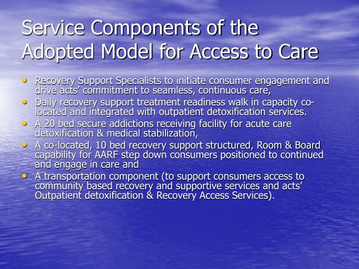 Service Components of the Adopted Model for Access to Care