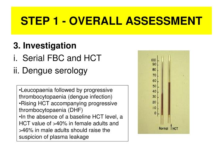 STEP 1 - OVERALL ASSESSMENT