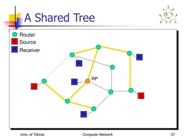 A Shared Tree