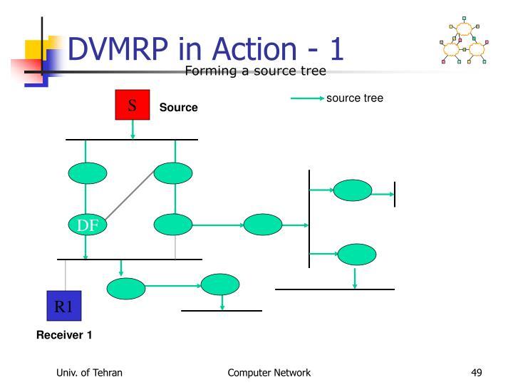 DVMRP in Action - 1