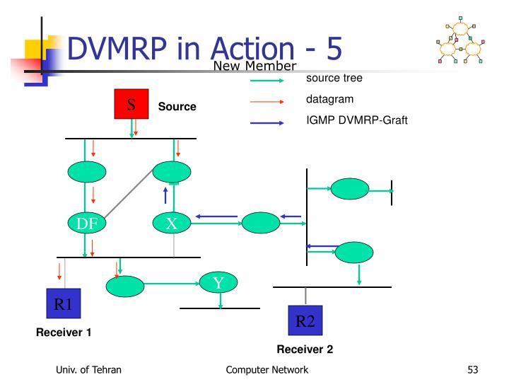 DVMRP in Action - 5