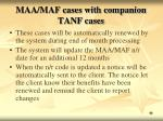 maa maf cases with companion tanf cases