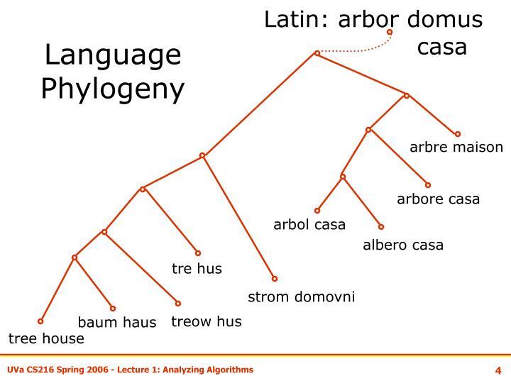 Latin: arbor domus