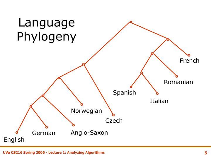 Language Phylogeny