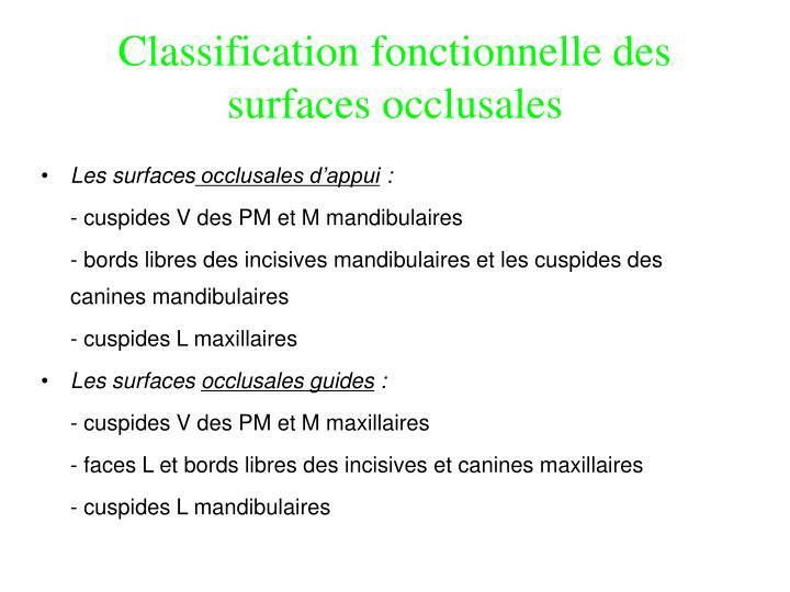 Classification fonctionnelle des surfaces occlusales