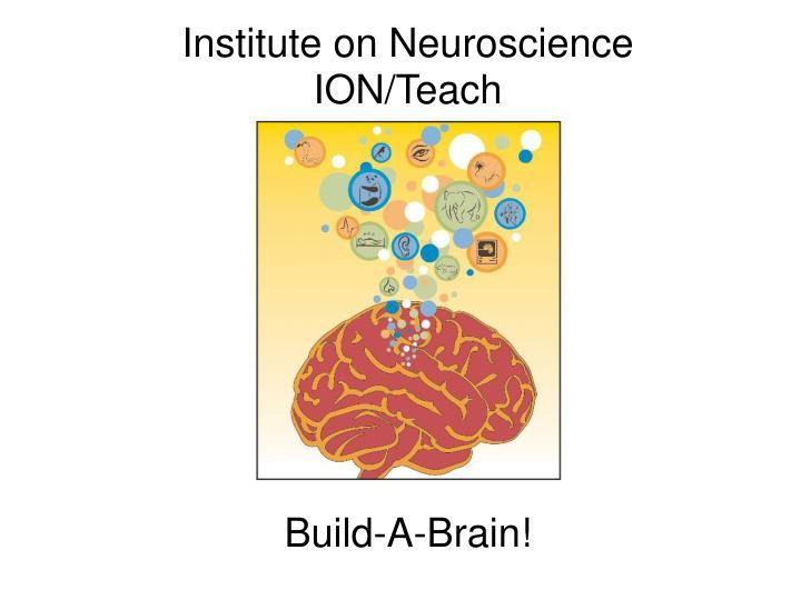 Institute on Neuroscience