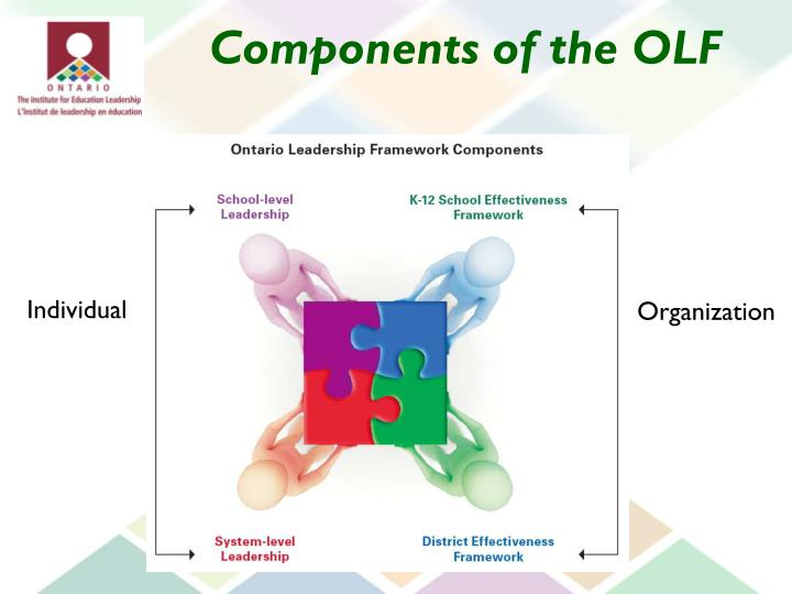 Components of the OLF
