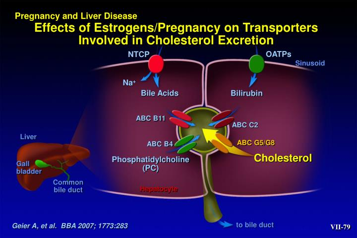 Pregnancy and Liver Disease