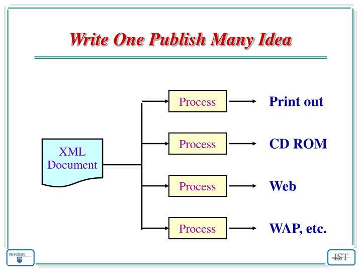Write One Publish Many Idea