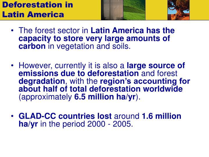 Deforestation in