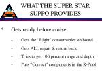 what the super star suppo provides