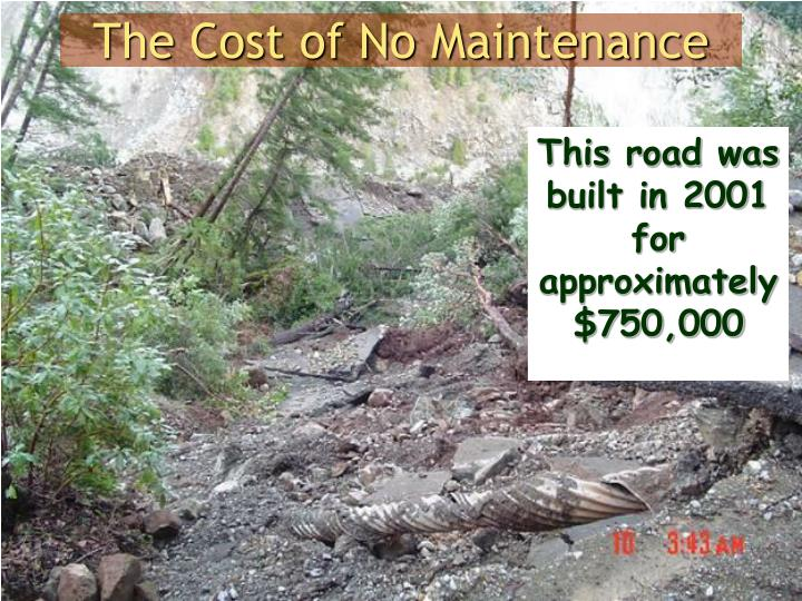 The Cost of No Maintenance
