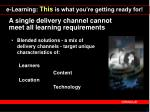 a single delivery channel cannot meet all learning requirements