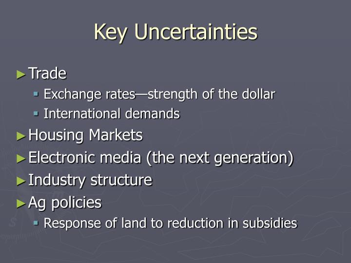 Key Uncertainties