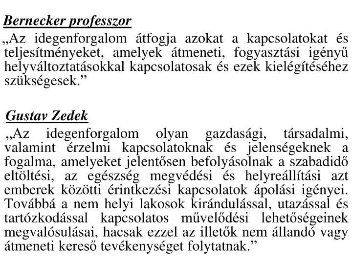 Bernecker professzor