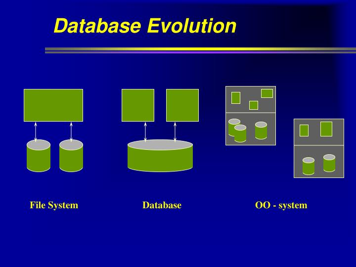 Database Evolution