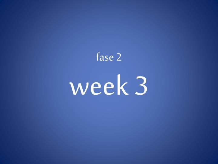 Fase 2 week 3