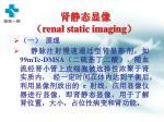 renal static imaging
