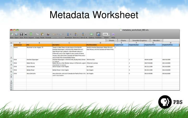 Metadata Worksheet