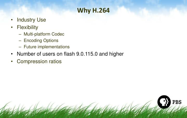 Why H.264