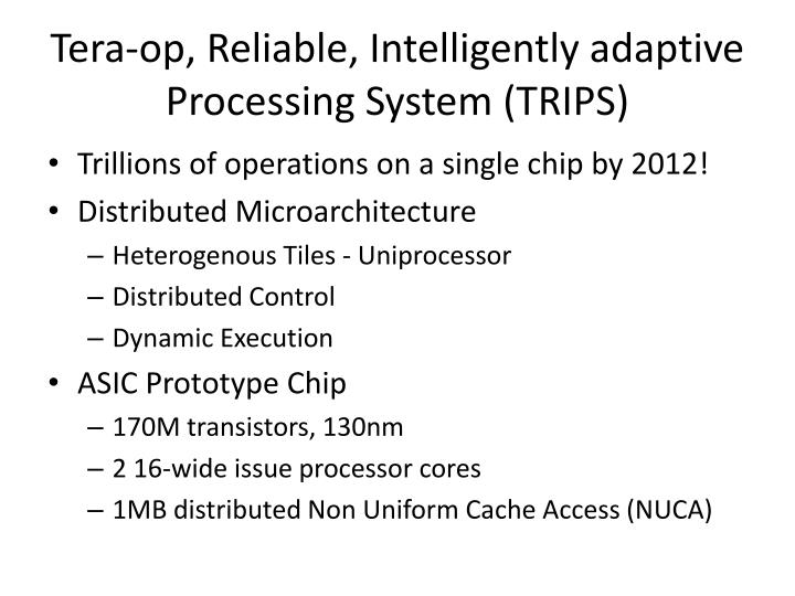 Tera op reliable intelligently adaptive processing system trips