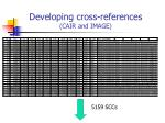 developing cross references cair and image